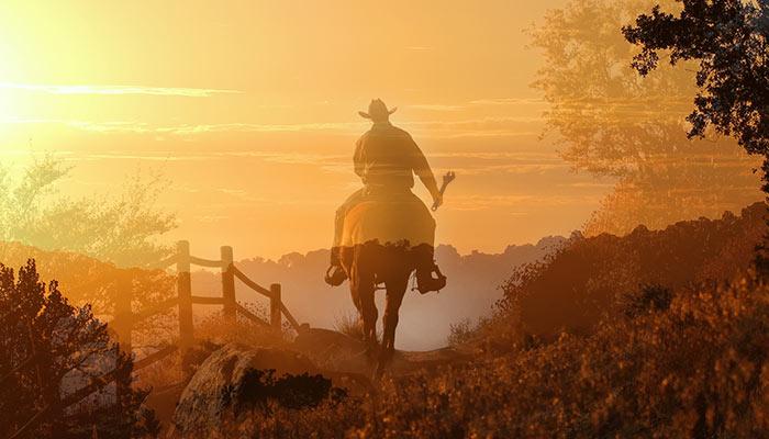 Cowboy Plumber