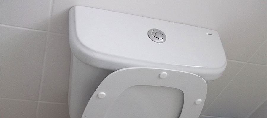 push button toilet flush